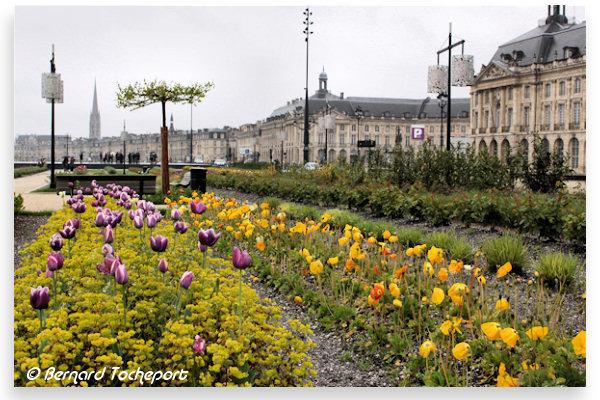Bordeaux le jardin des lumi res photo 33 - Qu est ce qu un jardin ...