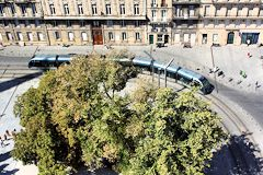 Bordeaux tram et anciens arbres de la place Pey Berland | Photo Bernard Tocheport
